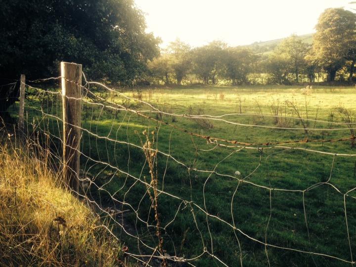 12.Fence:Boundary