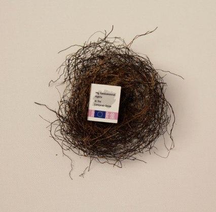 Peter's nest