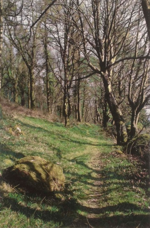 path-drawn-on-aiofe-and-denis-castle